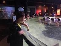 Field Trip to the Cleveland Aquarium