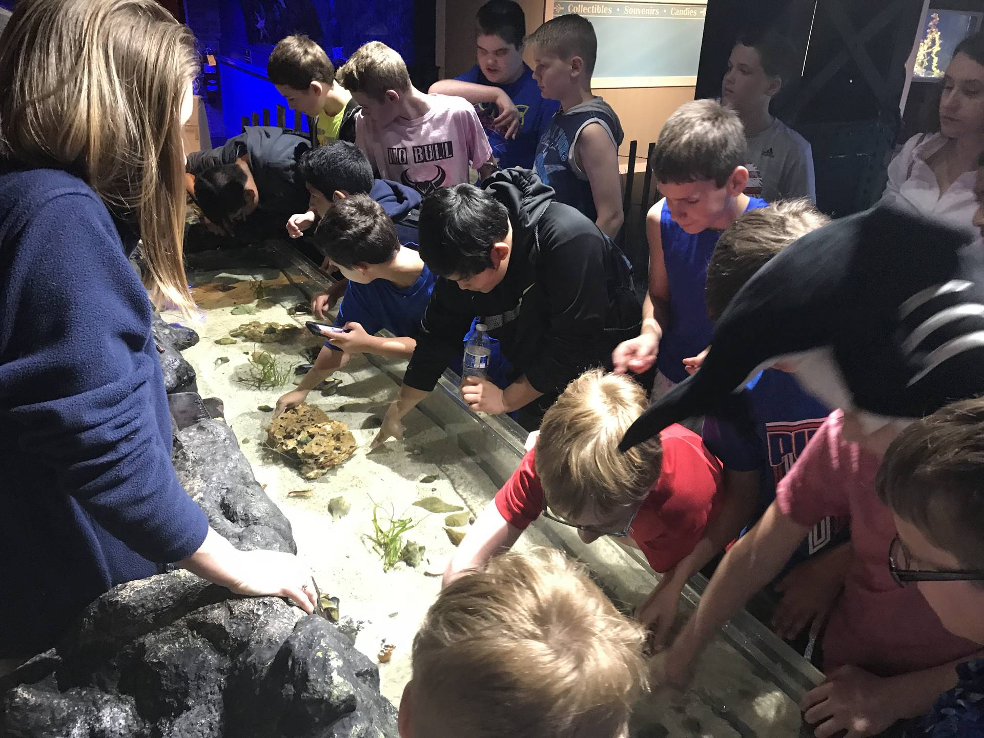 Field Trip to the Cleveland Aquarium