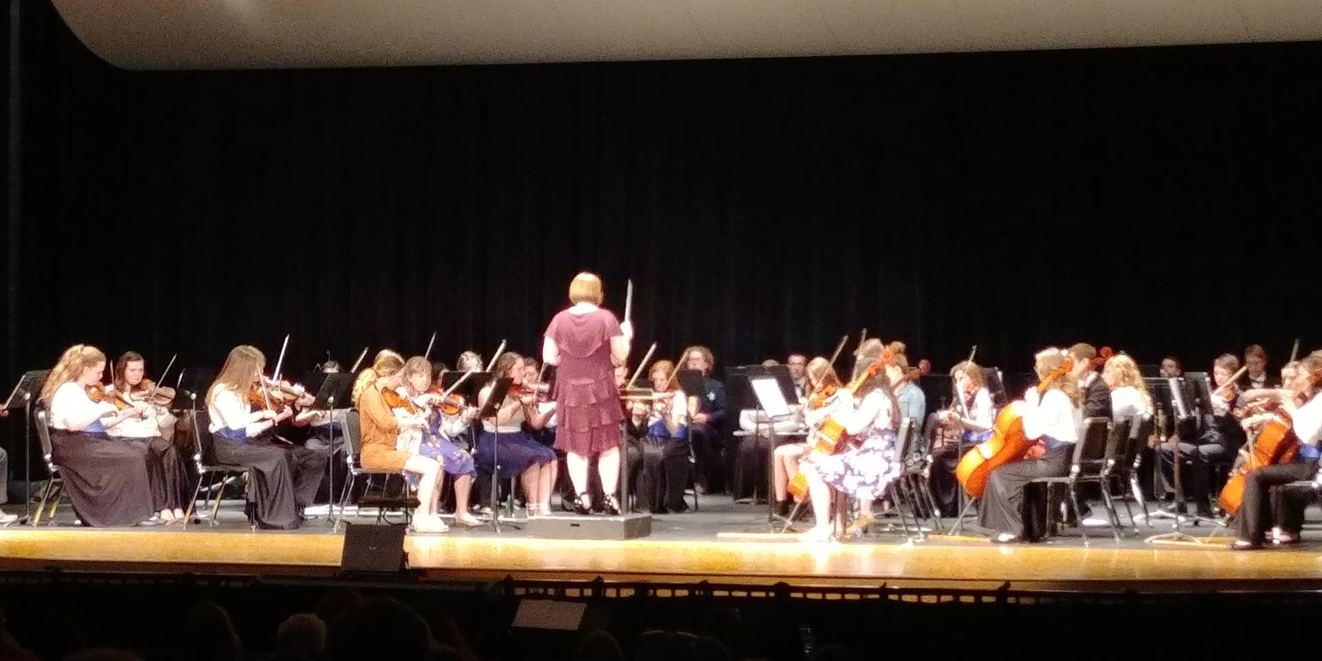 Orchestra President S. Krichbaum directs the orchestra